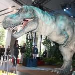 自立歩行するものとしては世界最大級となる全長8mのティラノサウルスが登場