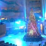 1993年のオープンから続く、大人気の降雪イベント。高さ約30m の吹き抜け空間に、ユーミンのクリスマスソングと舞い降りる雪と光の幻想的な世界を演出