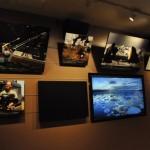 BBC EARTHが南極や密林で撮影する様子を、映像とパネル写真で紹介するメイキングコーナー