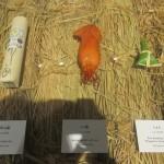 イカ飯のイカから、ちまき、茶碗などコメの容れ物の数々を紹介した「コメの計」。