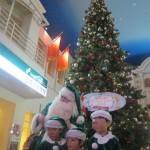 クリスマスツリーの前にデンマークの環境親善大使のグリーンサンタ®が登場