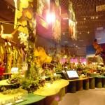 「大アマゾン展」の中核をなす「第2章大河アマゾン」のコーナーでは、アマゾン流域の景観を再現した大型ジオラマが設置されている。