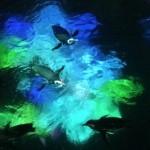 光と遊んでいるかのように泳ぐペンギンたち