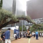 ソニービルの跡地に「Ginza Sony Park」が誕生